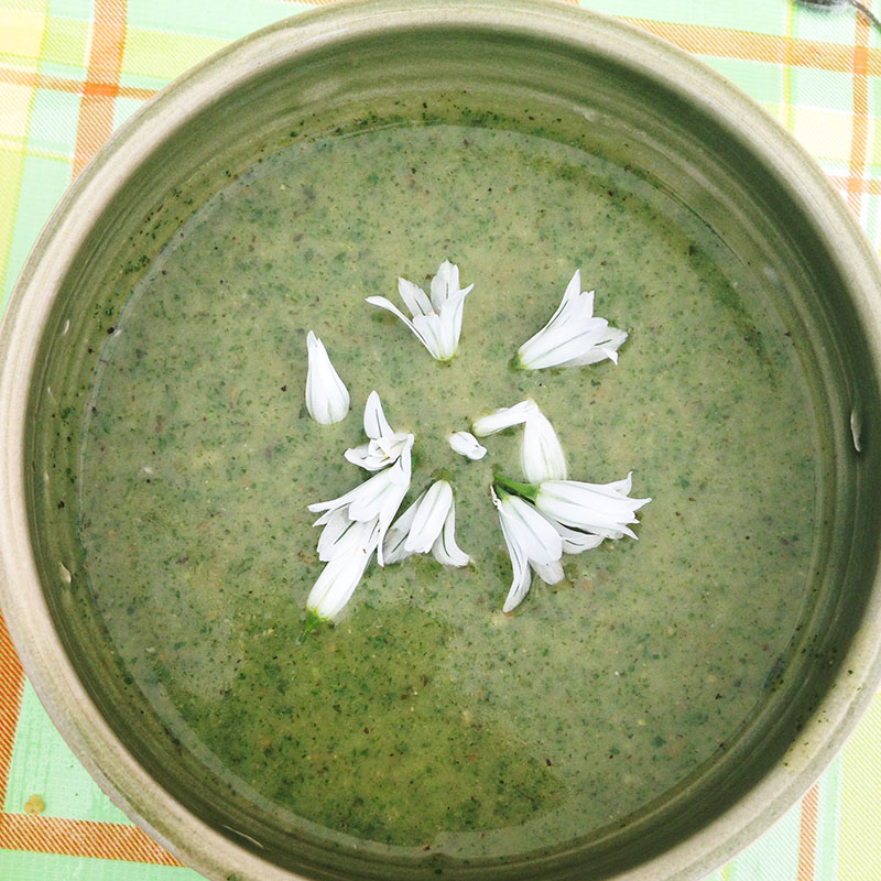 Nettle soup with wild leek blossoms